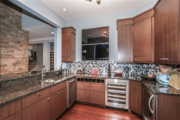 Amazing Transitional with custom amenities mansions