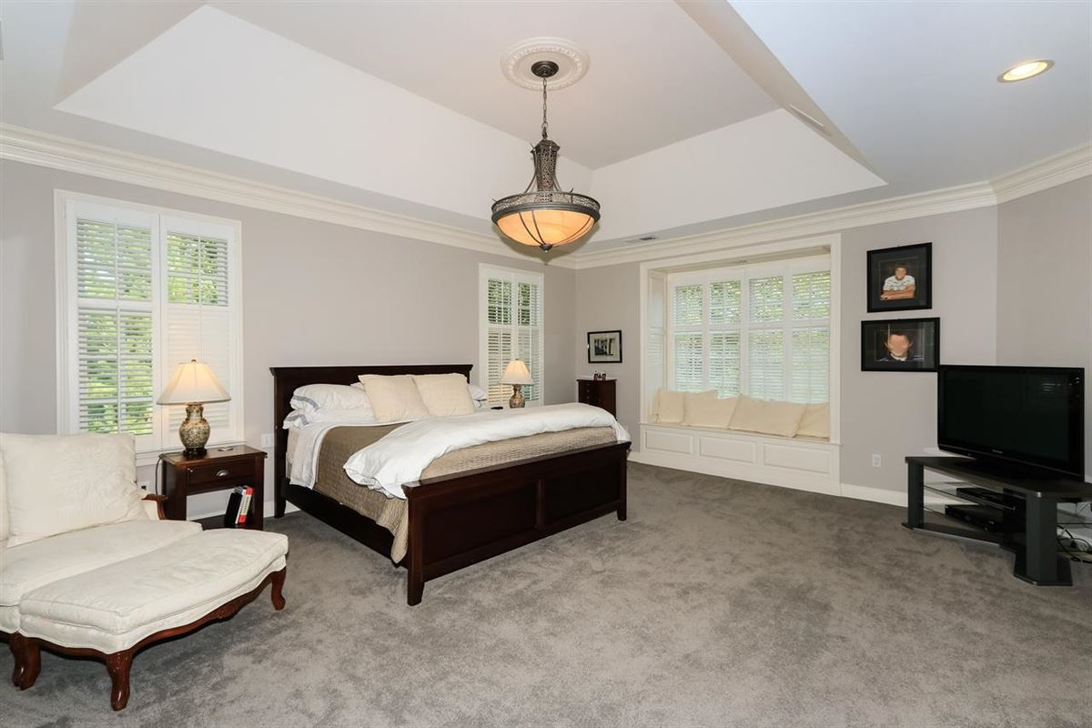 Luxury homes in Excellent Hyde Park location