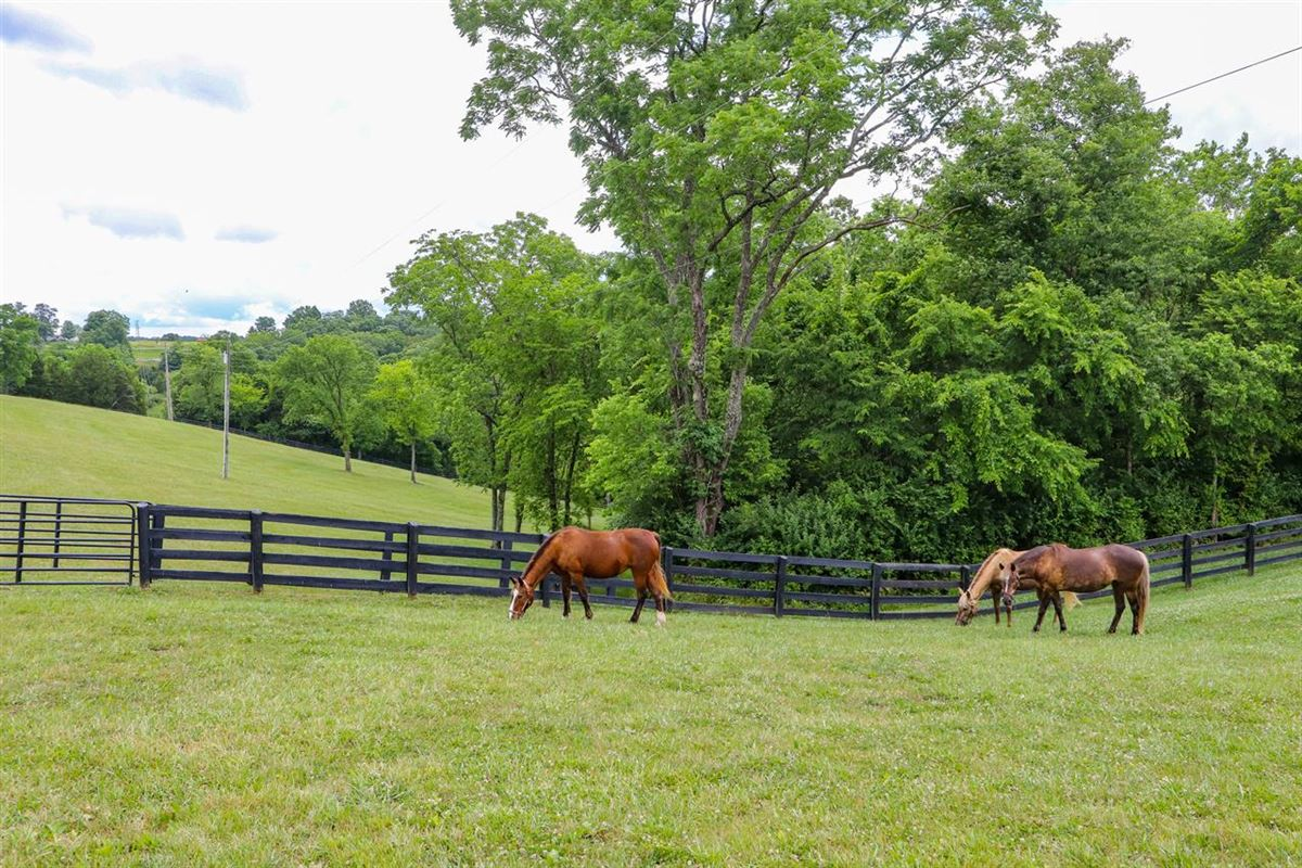 Luxury homes in Beautiful, 79-acre equestrian estate with log home