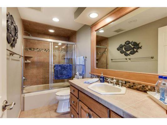 SENSATIONAL LAKE MINNETONKA PROPERTY ON LARGE LOT luxury homes