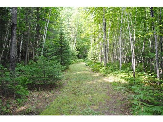 magnificent 190 acre property luxury real estate