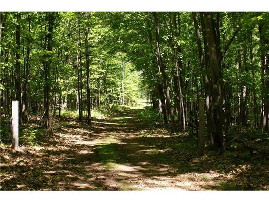 Luxury properties magnificent 190 acre property
