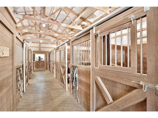 Luxury homes  sprawling walkout rambler