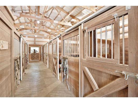 sprawling walkout rambler  luxury homes