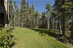 gorgeous home in Priddis Greens luxury real estate