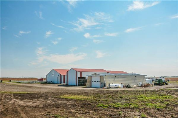 Exceptional Equine Facility with Two Estate Homes luxury properties