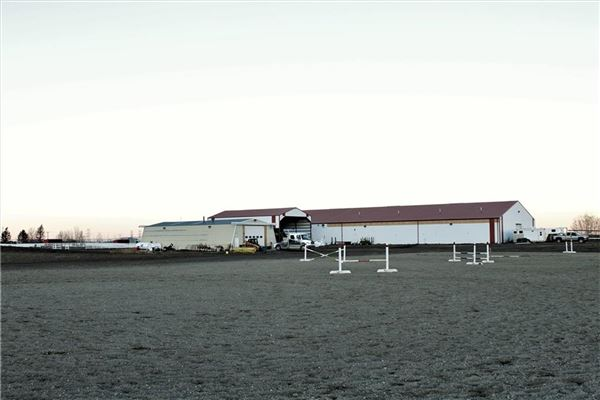 Mansions Exceptional Equine Facility with Two Estate Homes