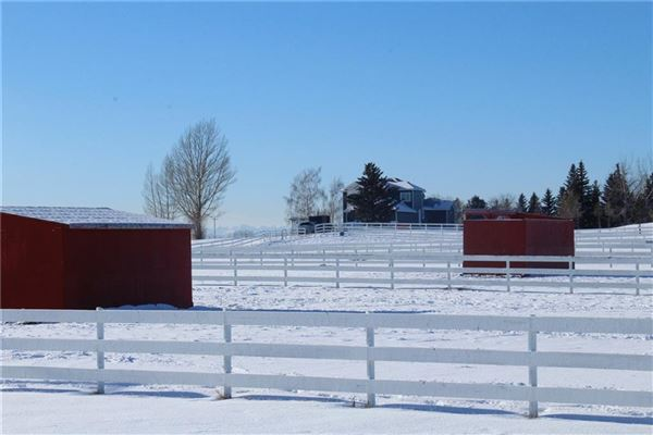 Exceptional Equine Facility with Two Estate Homes luxury homes