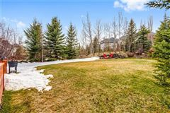 premier street in exclusive Elbow Valley luxury real estate