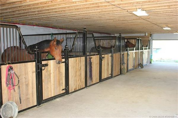 Equestrian Dream Property luxury real estate