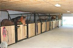 Equestrian Dream Property mansions