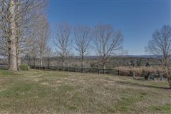 Luxury real estate 66 acre equestrian estate