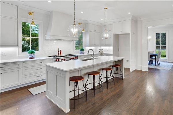 Stunning New Construction in Historic Brookhaven mansions