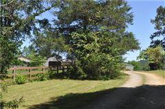 Mansions Outstanding Cheroko Farm
