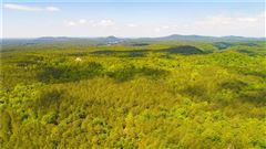 Luxury homes beautiful wooded tract
