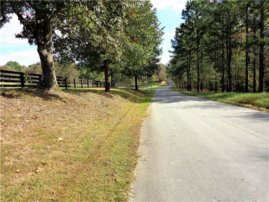 beautiful wooded tract luxury homes