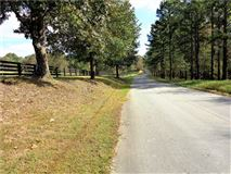 beautiful wooded tract luxury real estate
