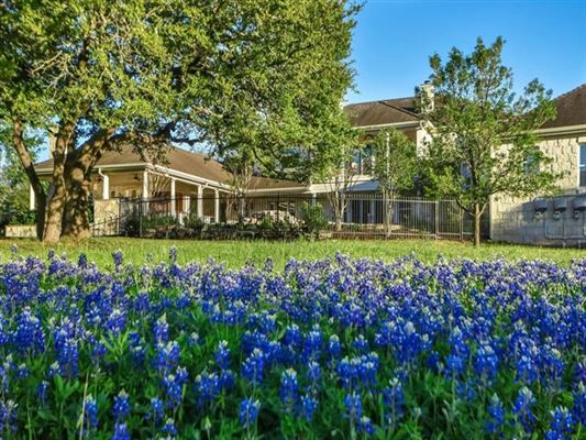 hill country neoclassical home luxury homes