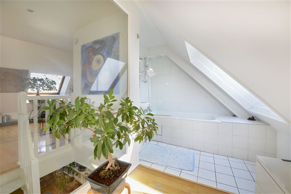 Luxury homes  4th and 5th floor duplex apartment