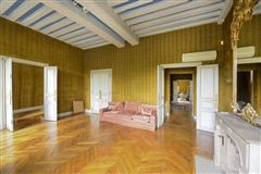 Mansions in magnificent apartment on the Ile Saint Louis