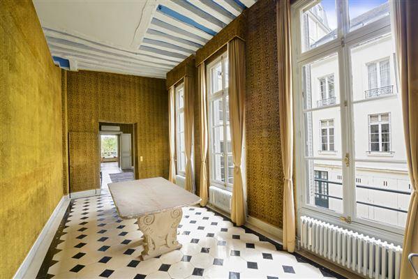 Luxury homes magnificent apartment on the Ile Saint Louis