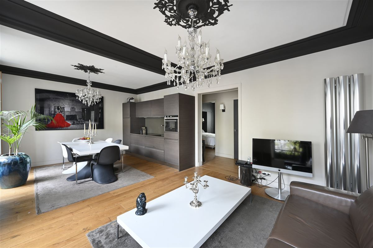 Luxury homes elegant light-filled apartment in perfect condition