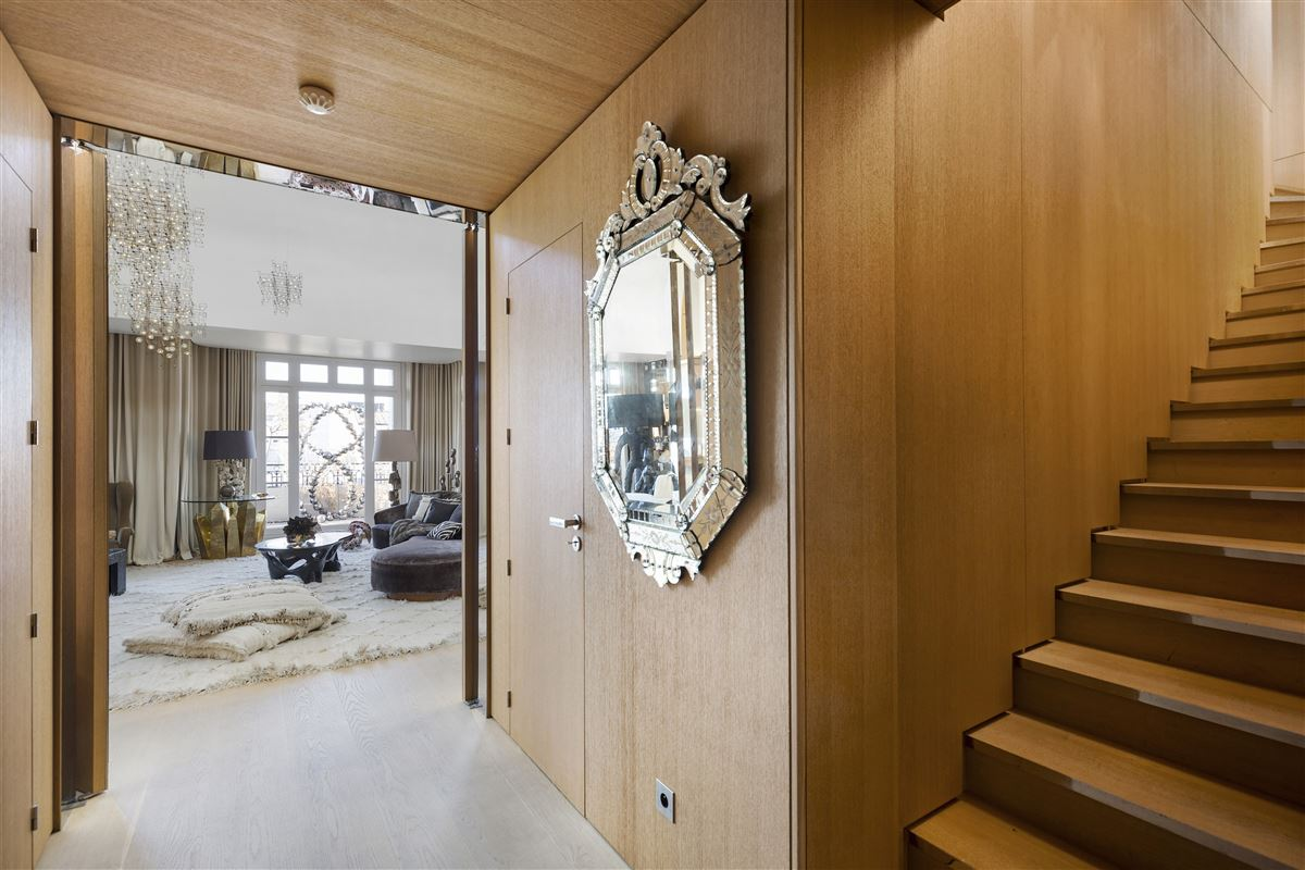 magnificent penthouse with 5-star services luxury homes