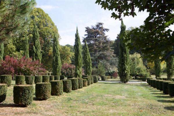 Luxury real estate delightful La Perche Natural Park property
