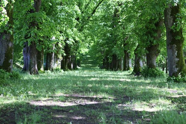 delightful La Perche Natural Park property luxury properties