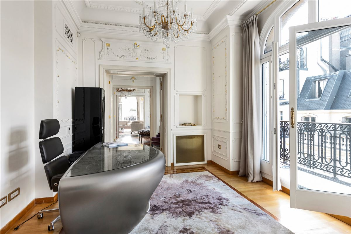 Luxury properties particularly refined apartment