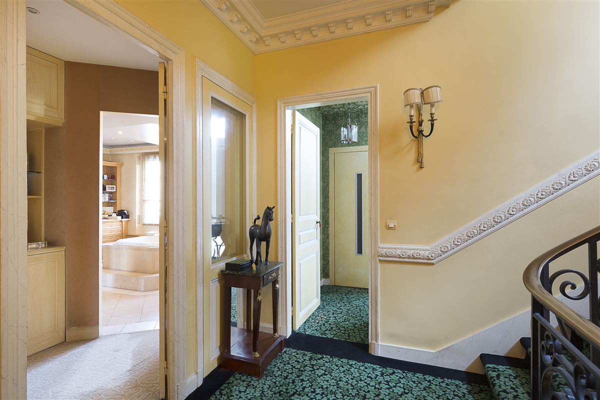 Mansions in superb Hotel Particulier