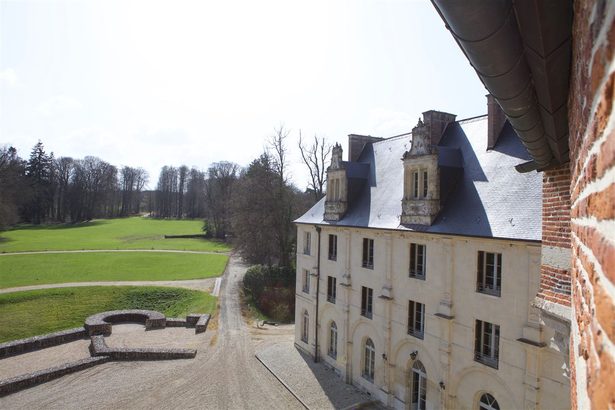 Luxury properties exceptional and peaceful chateau
