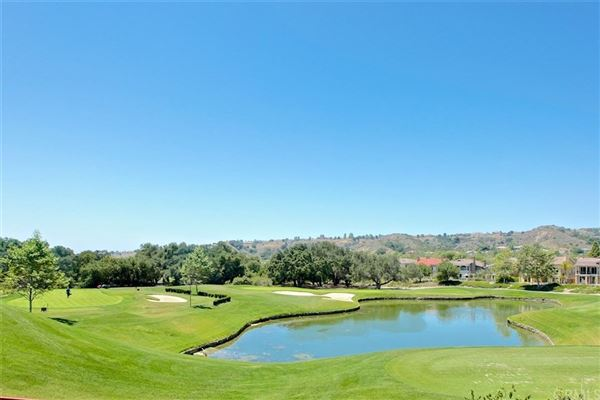 Beautifully updated pool home - centrally located in the Guard Gated Community of Coto de Caza mansions