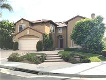 Executive estate home mansions