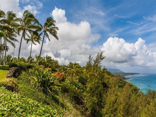 Mansions in singular ocean views
