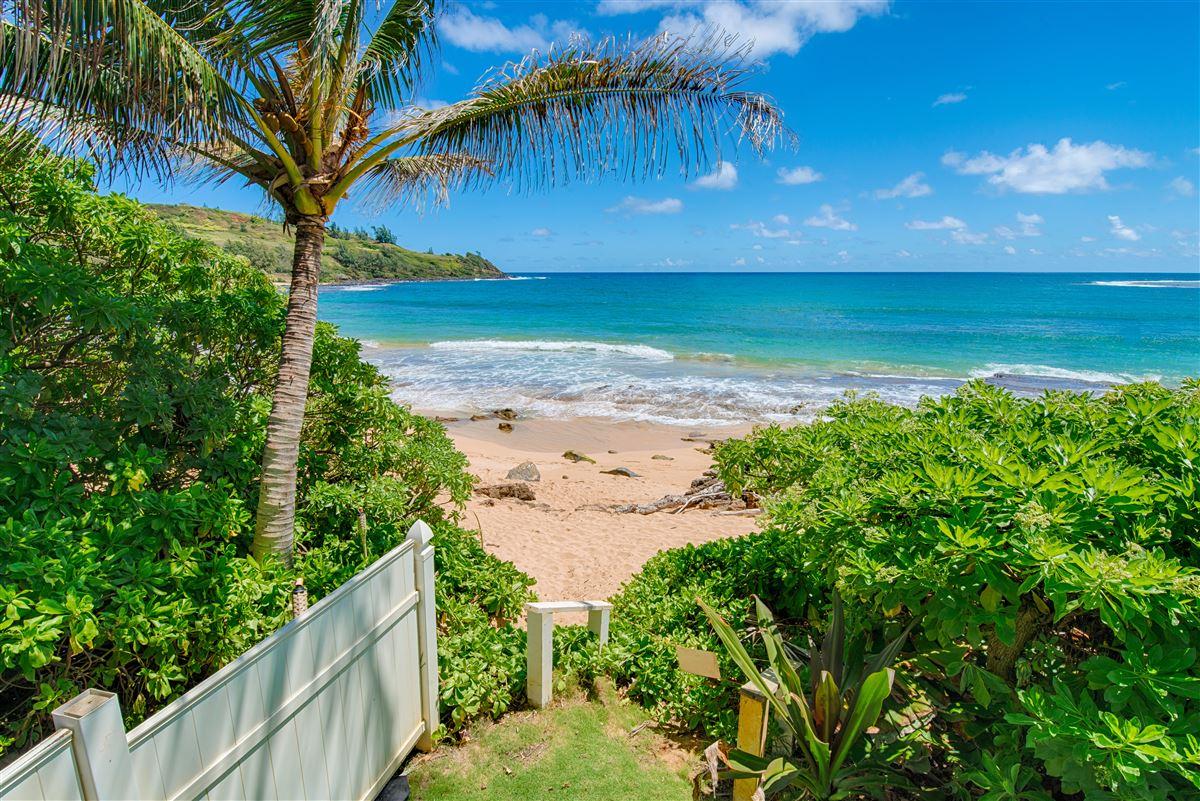 Luxury real estate Unique Beachfront Home in Moloaa Bay