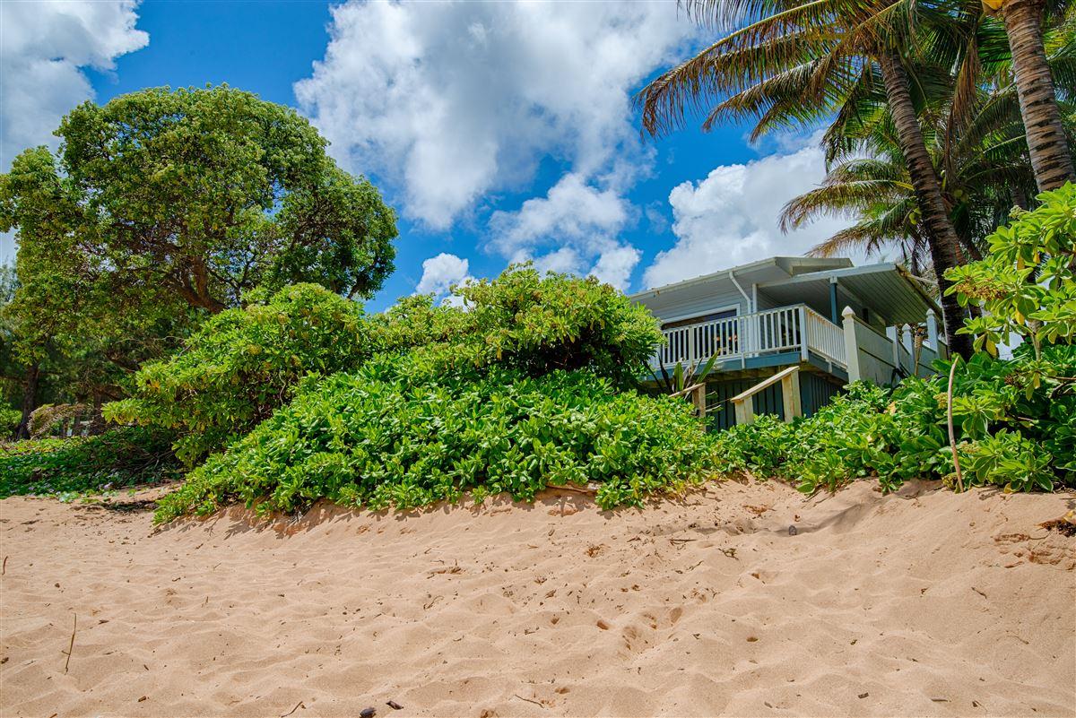 Unique Beachfront Home in Moloaa Bay luxury real estate