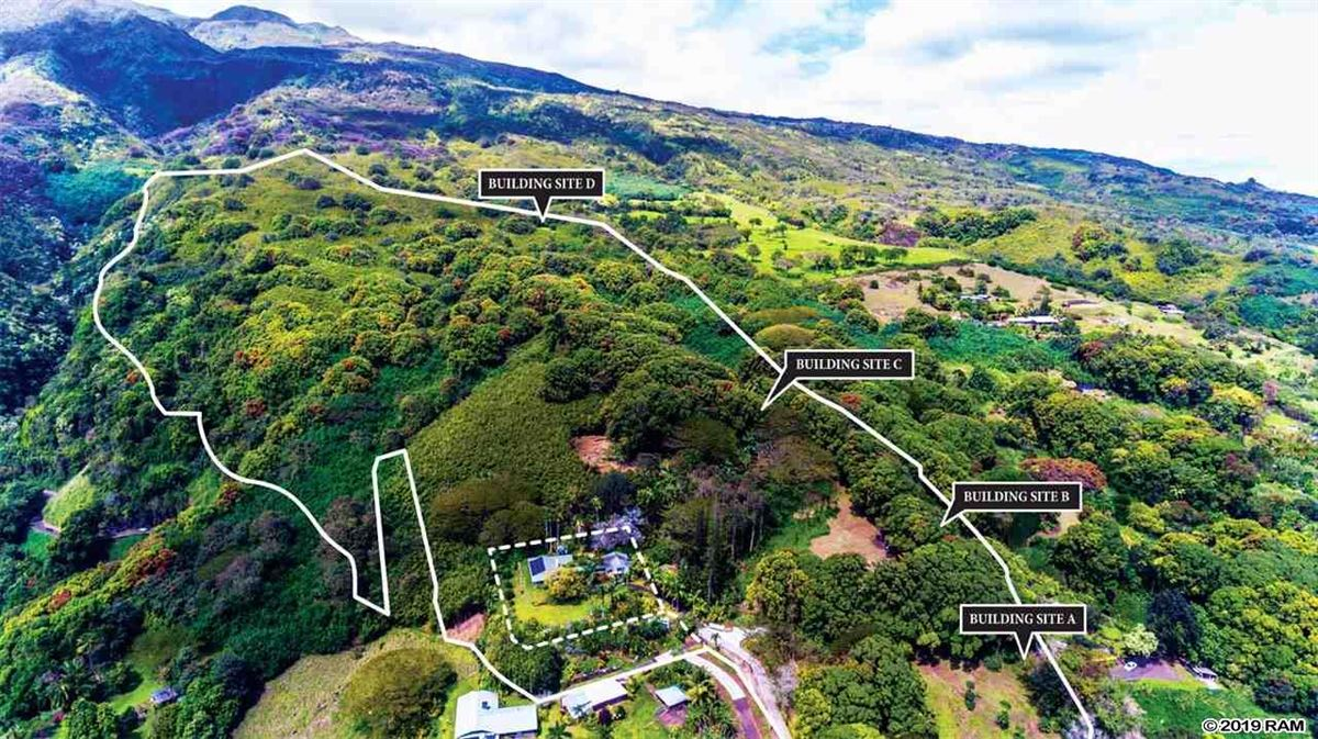 Mansions in Incredible opportunity to own 115 acres