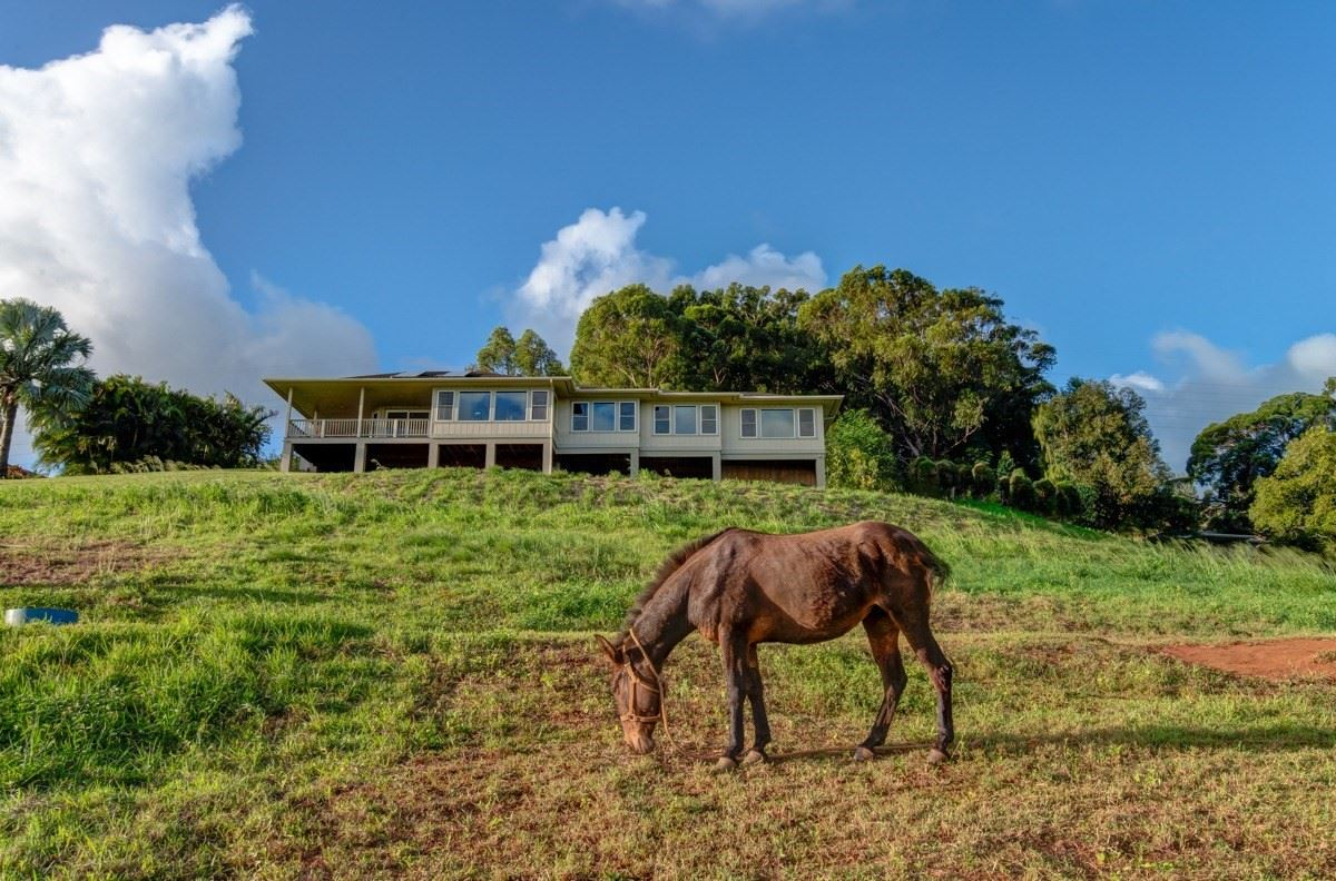 beautiful estate property with gorgeous views luxury homes