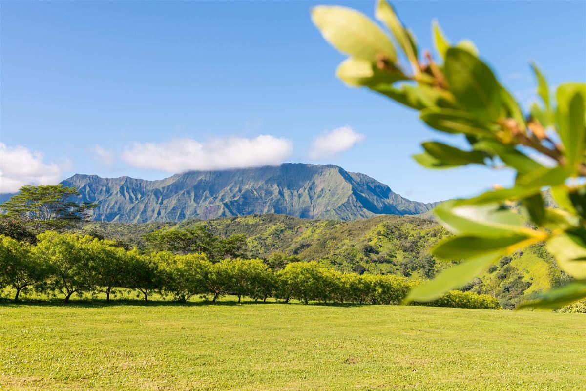 five Acres on Lush Island of Kauai luxury properties