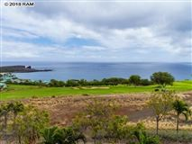 Mansions in property overlooking the Lanai Golf Course