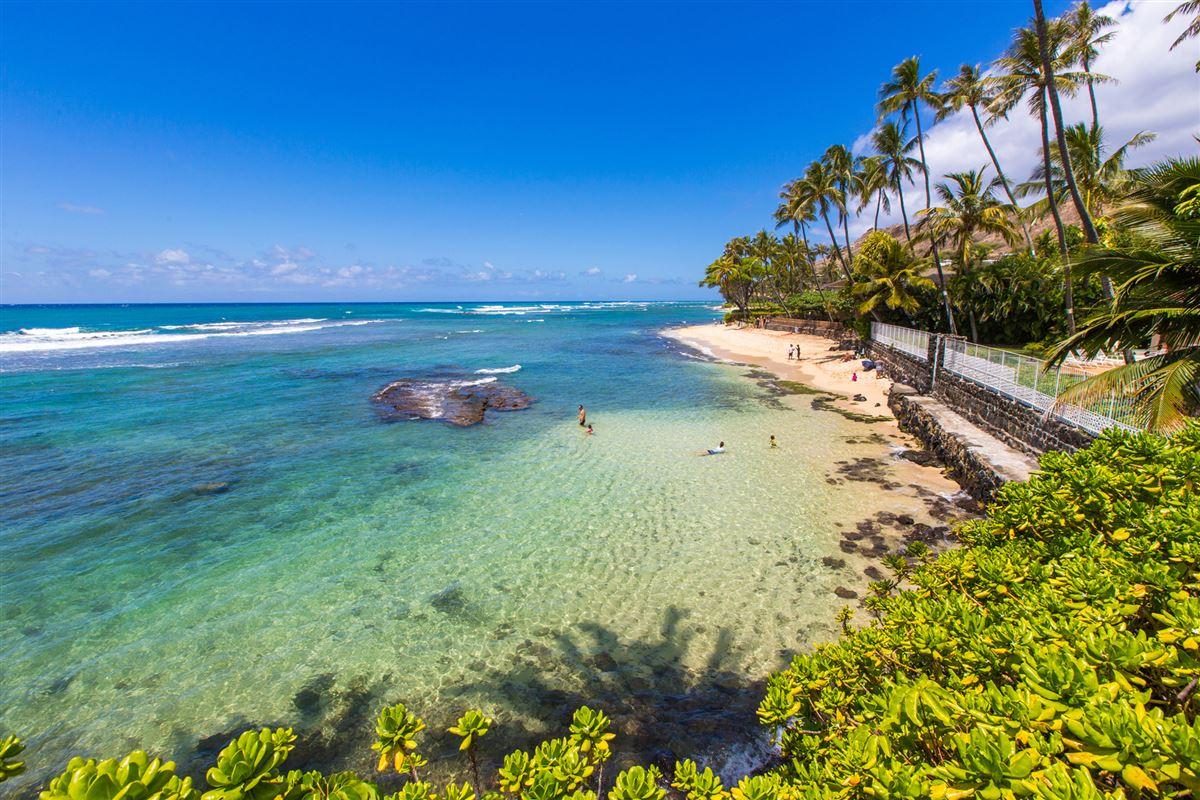 Elegant contemporary oceanfront luxury properties
