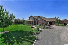 equestrian estate in desired Rancho Reata area mansions