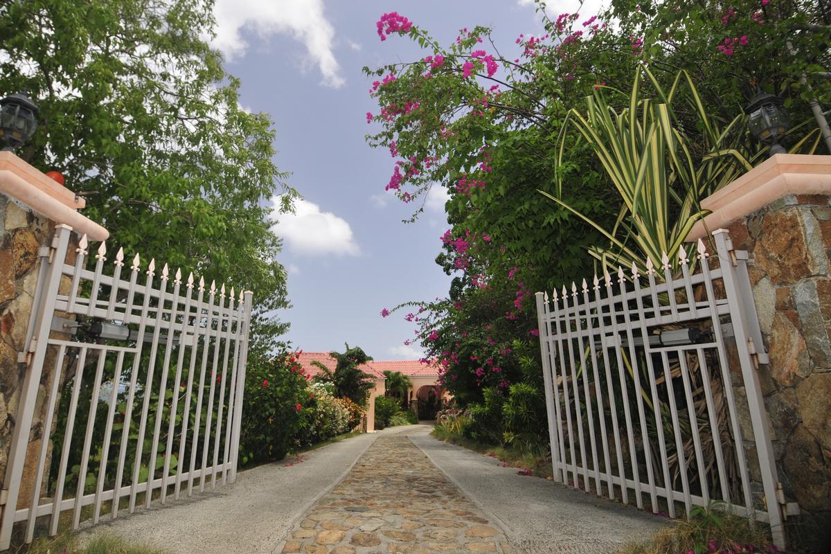 Expansive custom villa in little bay luxury homes