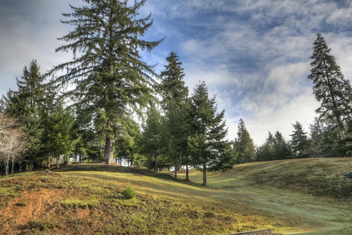 Luxury homes pastoral and forested country estate