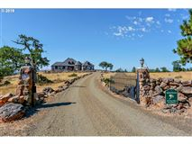 Luxury homes Exceptional Aerostone Airfield and Ranch