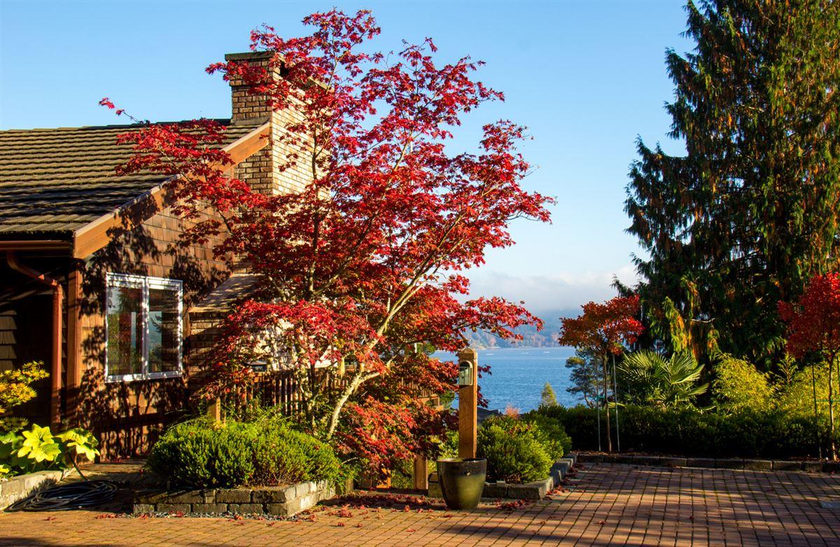 overlooking Quartermaster Harbor & Mt. Rainer luxury real estate