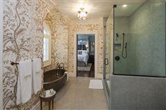 Luxury homes in elegance and grandeur