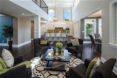 Luxury properties custom designed Anclote Oasis Estate