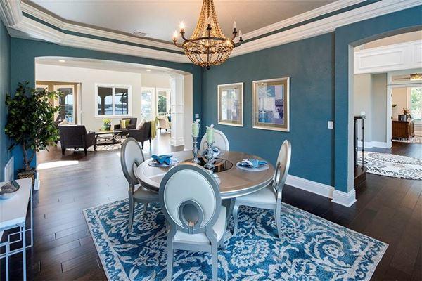 custom designed Anclote Oasis Estate mansions